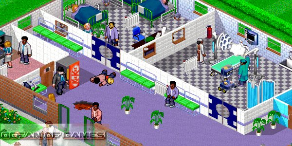Theme Hospital Features